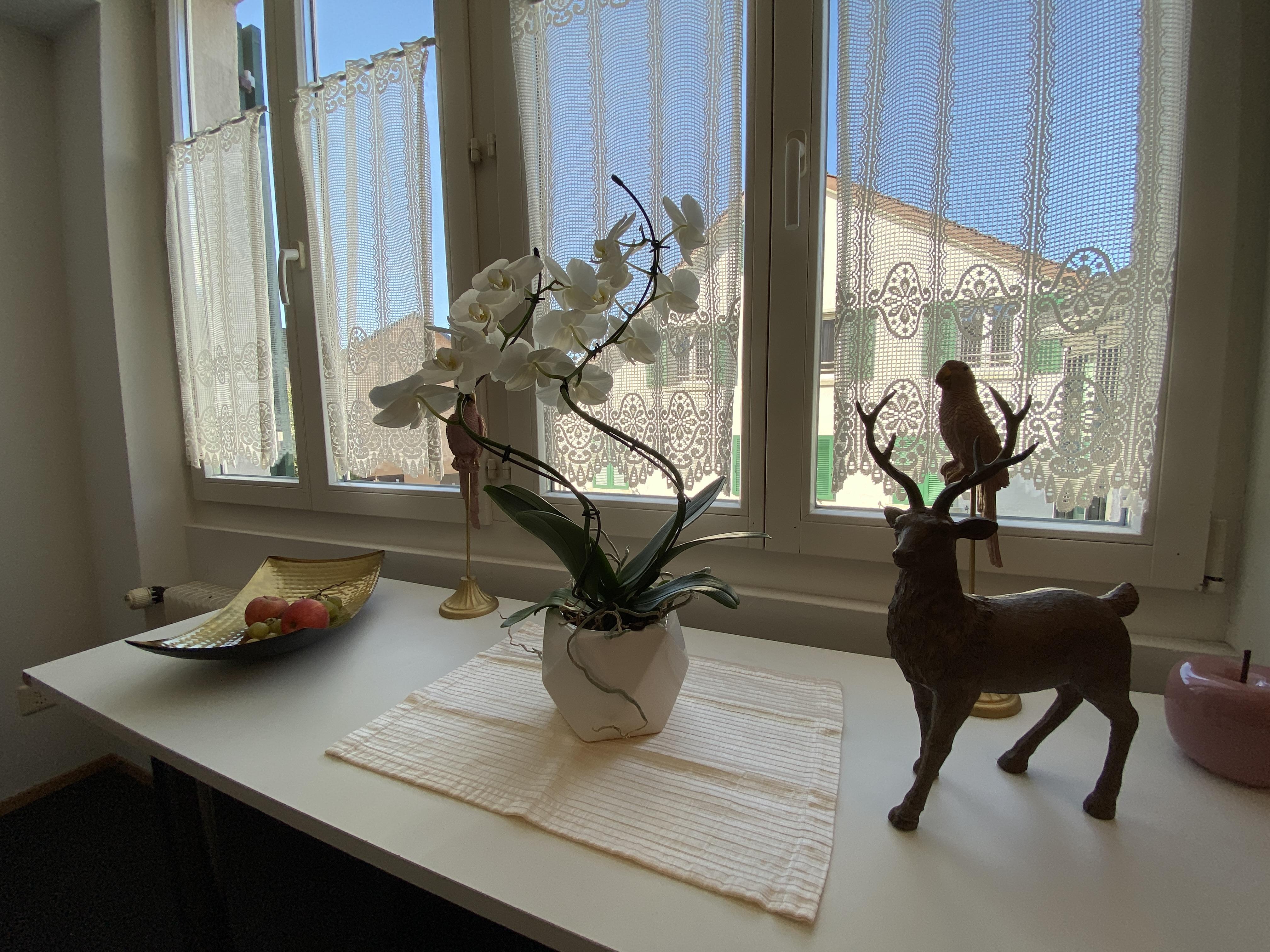 Der Gasthof Hirschen hat seinen Betrieb wieder aufgenommen.
